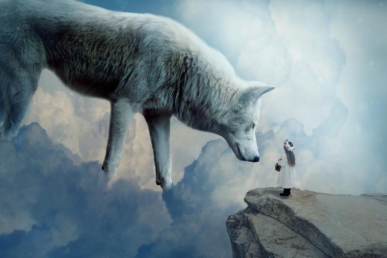 wolf-2082333_1920